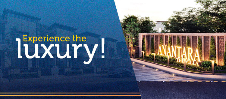 Experience the luxury!